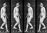 Church akiri nude studies