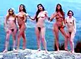 Cyber Guide Nudist beach australia nsw partner