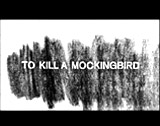 the effects of intolerance in to kill a mockingbird by harper lee To kill a mockingbird by harper lee was written in the 1950s and published mid-1960 we shall explore the plot, characters and themes in the book the symbolism relied on by the author shall be addressed according to its relevance to the plot.